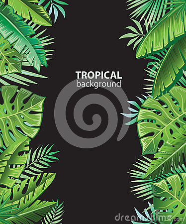 Background with tropical plants Vector Illustration