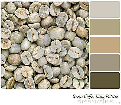 Green Coffee bean palette