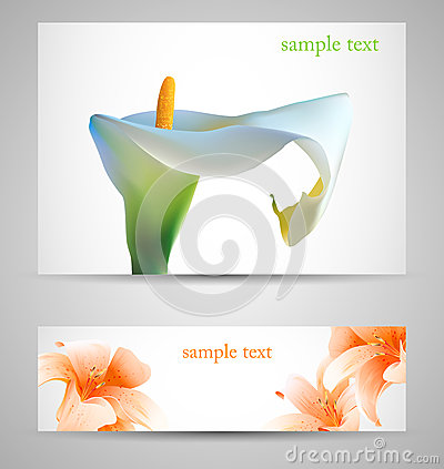 Background with White Calla and orange lilies