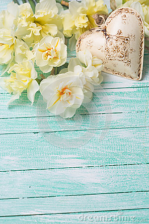 Free Background With Fresh Daffodils And Heart Stock Photo - 55021290