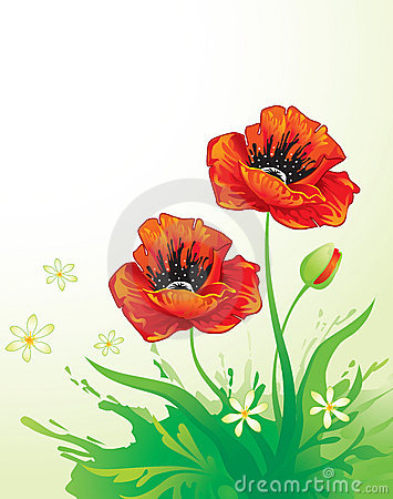 Free Background With Poppy Royalty Free Stock Images - 5436799