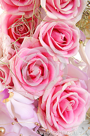Free Background With Roses Royalty Free Stock Photos - 25659558