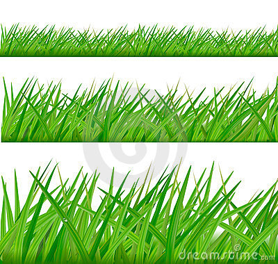 Backgrounds with green grass.