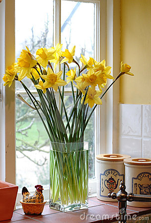 Free Backlit Daffodils In A Family Kitchen Stock Images - 1333234