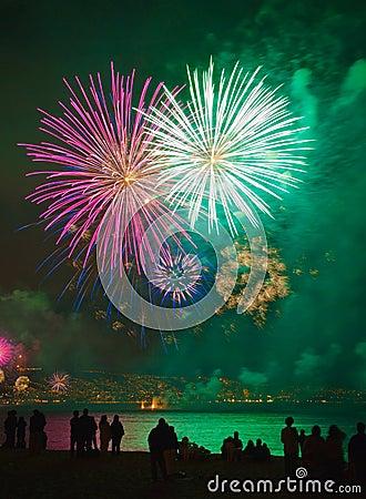 Backlit people standing looking fireworks at sea