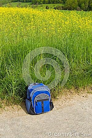 Backpacker rest