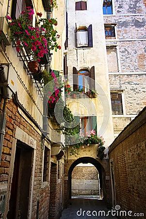 Free Backstreets Of Venice Royalty Free Stock Image - 21843546
