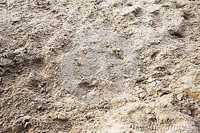 Backwashed sand of horse manege