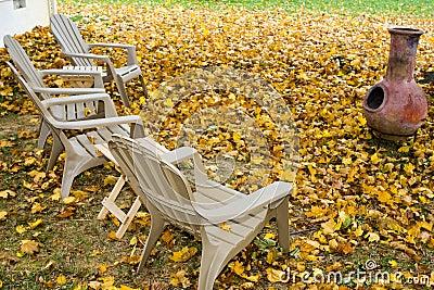 Backyard in Autumn