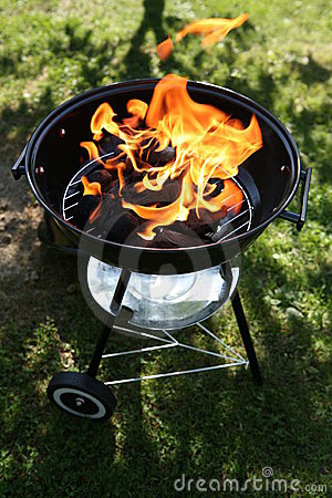 Free Backyard Barbecue Royalty Free Stock Photo - 2418605