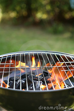 Free Backyard Barbecue Grill Royalty Free Stock Image - 2418606