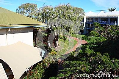Backyard in hotel