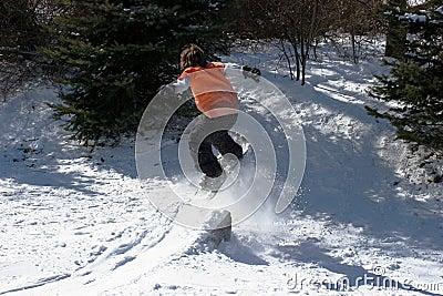 Backyard Snowboarding