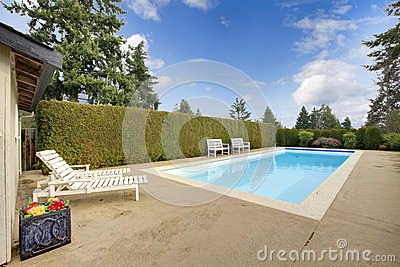Backyard swimming pool surrounded by hedge trim