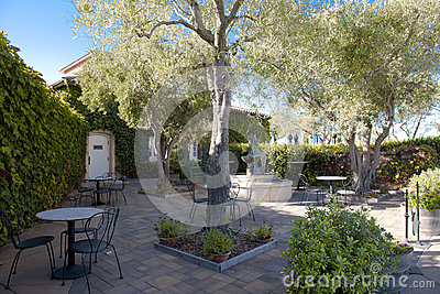 Backyard of a winery with nice terrace