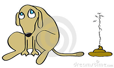 Bad dog