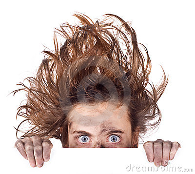 Free Bad Hair Day Banner Stock Images - 7881674