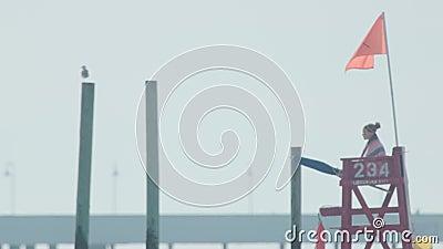 Badmeesterstoel op strand stock videobeelden
