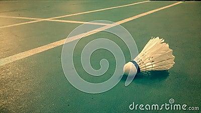 Badmintin shuttlecock on the court