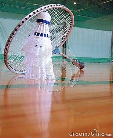 Free Badminton 2 Stock Photography - 414882