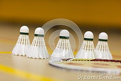 Badminton birds