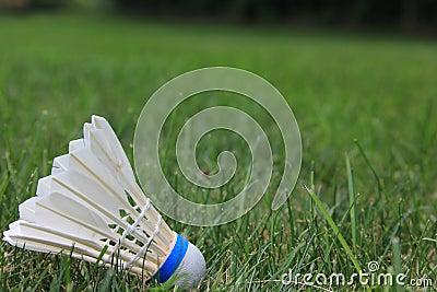 Badminton-Piepmatz oder Federball