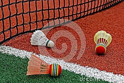 Badminton shuttlecocks-5
