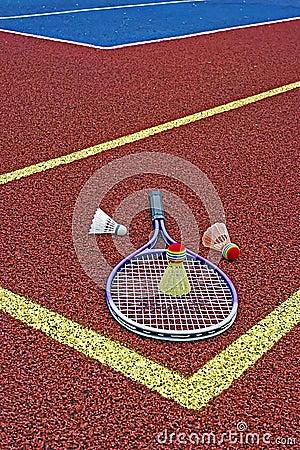 Badminton shuttlecocks & Racket-4