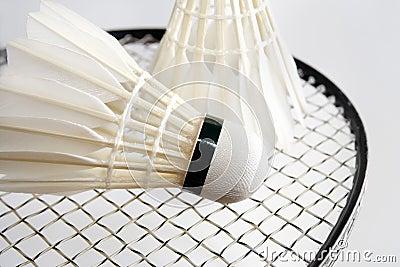 Badminton shuttlecocks on the racket. Horizontal