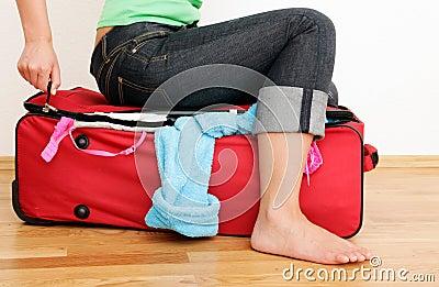 Bag pack luggage