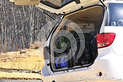 Bagage in boomstam van auto