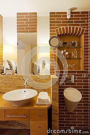 Bagno Con Il Muro Di Mattoni Fotografia Stock - Immagine: 55662098