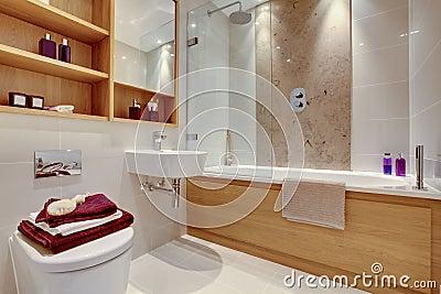 Bagno Moderno Di Lusso Immagini Stock - Immagine: 22276224