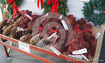 Bags of Pine Cones on Sale for Christmas