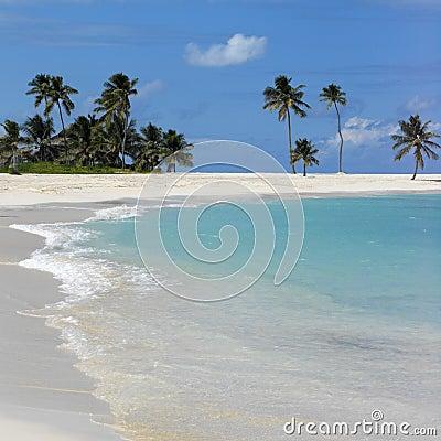 Bahamas Beach Scene