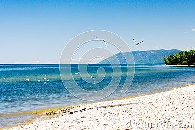 Baikal lakeside