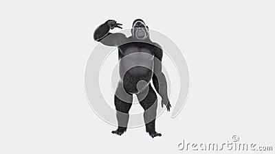 Baile de la diversión del hip-hop del gorila