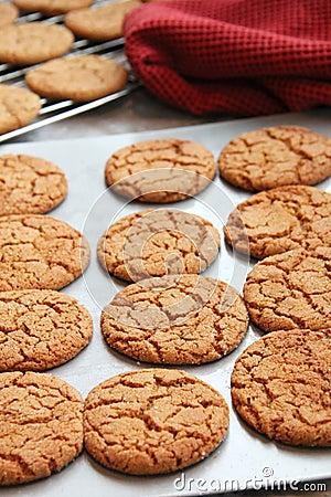 Free Baking Cookies Stock Photos - 17544763