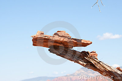 Balancing act - red bricks stacked on a dried bran