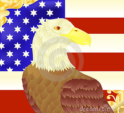 Bald eagle an american flag