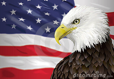 Bald eagle and flag
