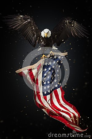 Free Bald Eagle Flying With American Flag Stock Photography - 118764982
