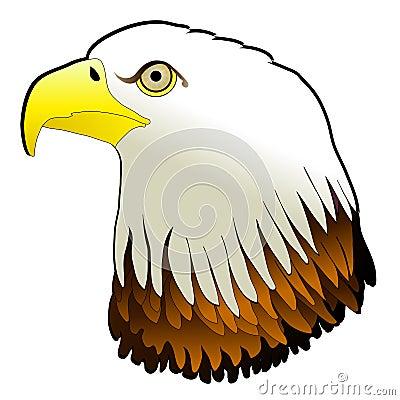Bald Eagle Powerful Bird Pray