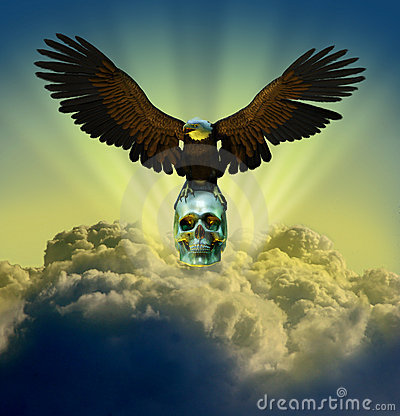 Bald Eagle on Skull in Sky