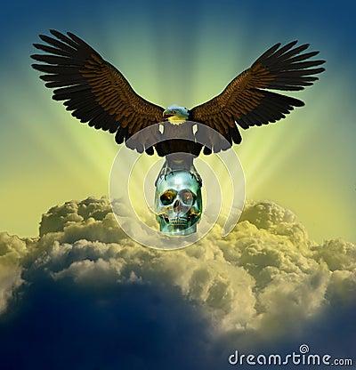 Bald Eagle on Skull in Sky
