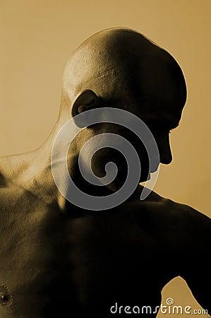 Free Bald Is Beautiful Royalty Free Stock Image - 1063906