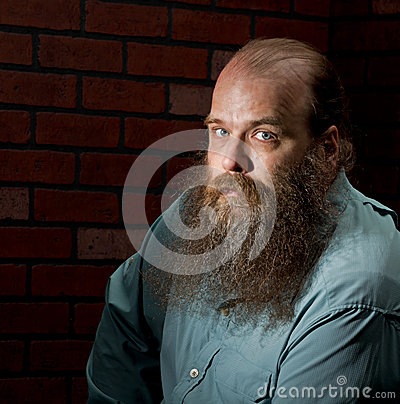 Portrait of a bearded, balding middle aged man