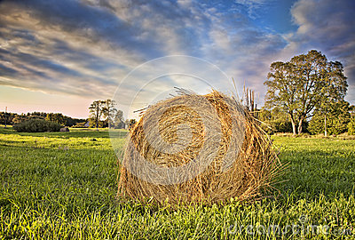 Bale of Hay. HDR