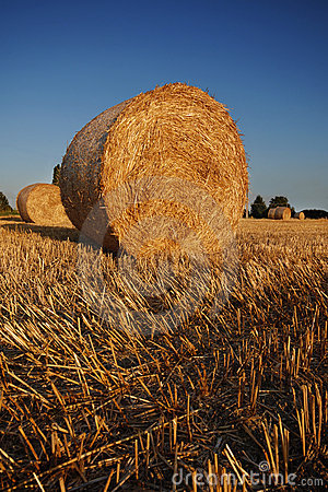 Free Bales Of Straw Stock Photo - 6045580
