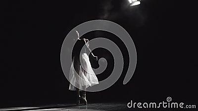 Baletniczy tancerz Na scen przedstawieniach zdjęcie wideo
